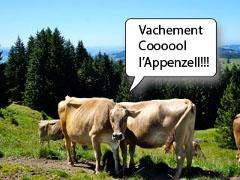 Fêter le 1er août en Appenzell