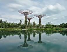 Le côté nature de Singapour
